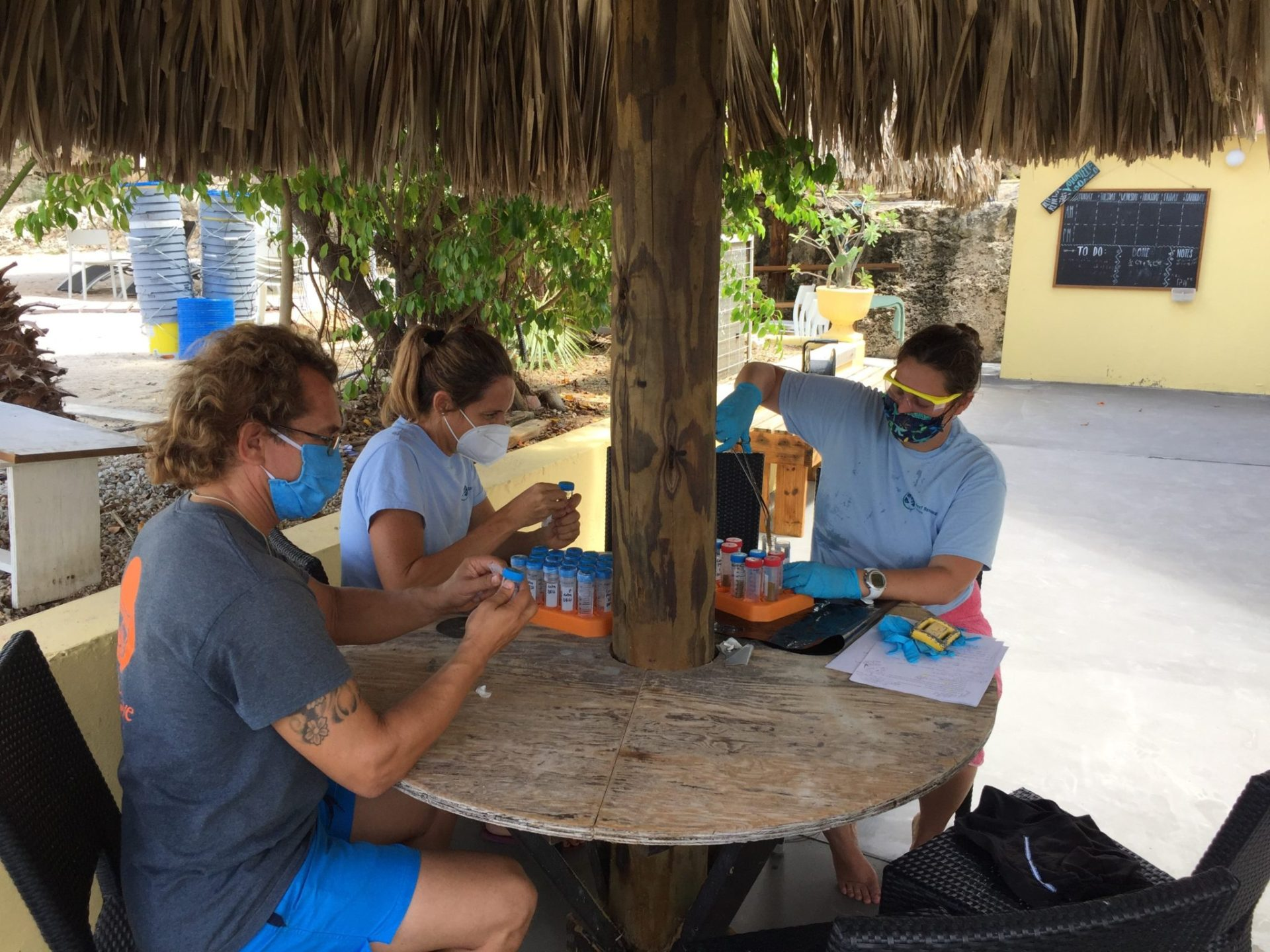 RRFB team working on the coral sampling and fragments preparation