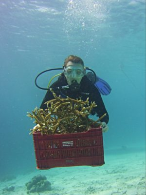 Cheyenna bringing staghorn coral to the boat